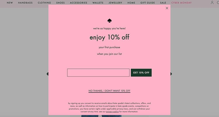A pop-up on e-commerce store to build a subscribers list - holiday marketing strategy